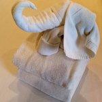 Elephant towel - nice work