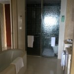 room 431 bath tub, shower cubicle, toilet cubicle, lavatory
