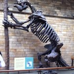 Foto di Museum of London
