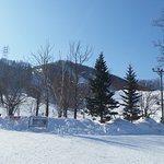 The snowfield