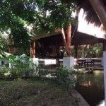 Uga Jungle Beach Foto