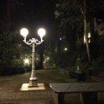 night-walks