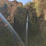 En Gedi Nature Reserve Foto