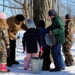 Montour Preserve Maple Sugaring
