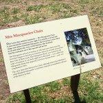 Photo of Mrs Macquarie's Chair
