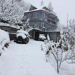 Deodar Cottage