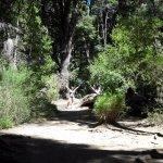 Photo of Cascada de los Duendes