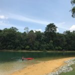 Photo of MacRitchie Reservoir