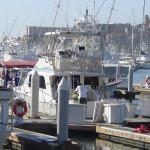 Plenty of Fishing Boats