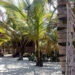 Foto de Costeno Beach Surf Camp