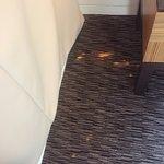 Bleach spots on carpet in room.