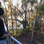 Wyndham Garden Gainesville Foto