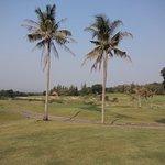 Photo de Banyan Golf Club