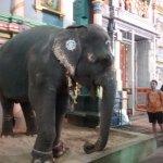 Foto di Pondicherry Executive Inn Pvt Ltd