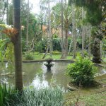 Tranquil water feature of the main garden