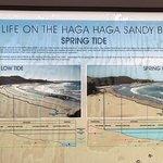 Photo of Haga Haga Hotel