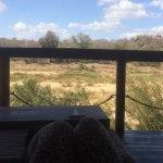Photo of Jock Safari Lodge