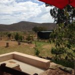 View from cafe veranda towards donkey enclosures