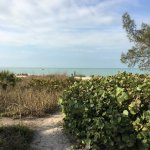 Foto de On the Beach- Casey Key