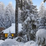 Foto de Alta Crystal Resort at Mount Rainier