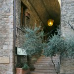 Foto de Hotel Properzio
