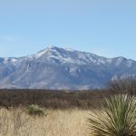 Photo de San Pedro Riparian National Conservation Area