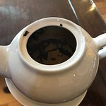Baby Buddha Chinese Teahouse照片