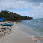 Foto de Booby Cay Island
