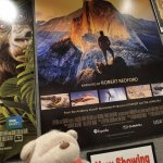 2bearbear catching 3D Movie - National Parks Adventure 3D at Pink Palace Memphis