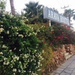 Photo of Arava Hostel Eilat
