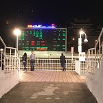 Photo of Macau (Yat Yuen) Canidrome