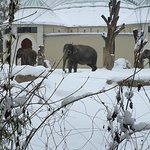 Tierpark Hellabrunn Foto