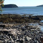 Private access to the beautiful Maine coast with a view of the Porcupine Islands.