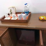 Amenities in Double Pool Facing Superior Room