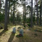 Foto de Skogskyrkogården