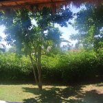 """ocean """"view"""" villa 53"""