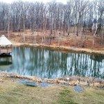 Pretty Gazebo on the Pond