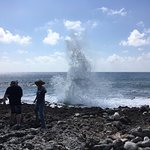 blow holes doing their thing