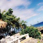 Photo of Casa Marina Reef