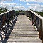 Ponte para chegar a trilha