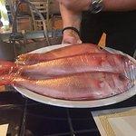 Foto de Mahi Mahi Restaurant and Bar