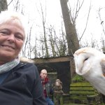 Me with a barn owl called Mr Pips