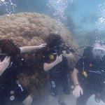Photo of Amazing Phuket Adventures