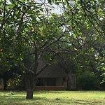 Photo of Satara Rest Camp