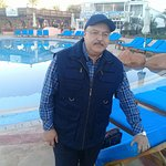 me on the main pool at Hilton Sharm Dreams Resort