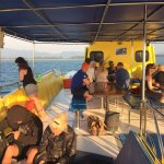 Sea Bees Diving Khao Lak - Day Tours Foto