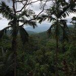 Jungle and hills surrounding the Vanilla Villa