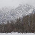 sleigh ride -- falling snow