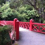 Pukekura Park Foto