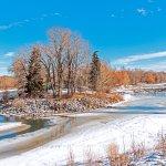 Bow River Foto